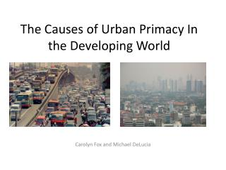 The Causes of Urban Primacy In the Developing World