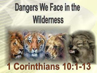 Dangers We Face in the Wilderness