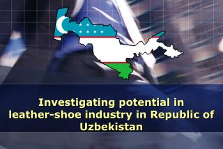 Investigating potential in leather - shoe industry in Republic of Uzbekistan
