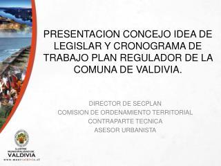DIRECTOR DE SECPLAN COMISION DE ORDENAMIENTO TERRITORIAL CONTRAPARTE TECNICA ASESOR URBANISTA