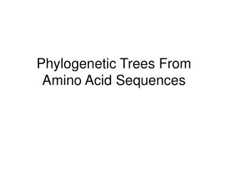Phylogenetic Trees From Amino Acid Sequences