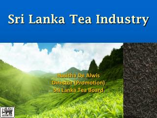 Sri Lanka Tea Industry