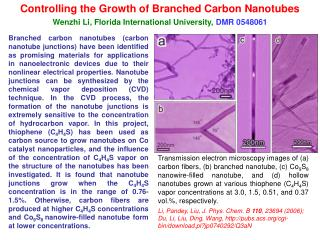 Controlling the Growth of Branched Carbon Nanotubes
