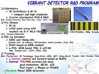 Vibrant Detector r&D Program