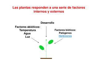 Factores abi óticos: Temperatura Agua Luz
