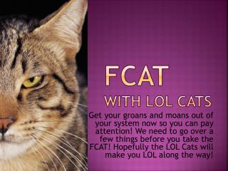 FCAT With LOL CATS