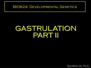 BIO624: Developmental Genetics