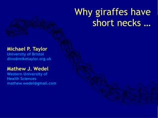Why giraffes have short necks …