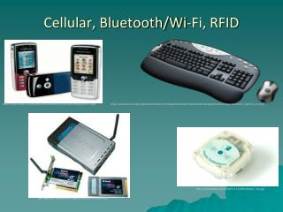 Cellular, Bluetooth/Wi-Fi, RFID