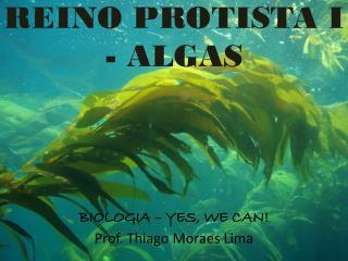 BIOLOGIA – YES, WE CAN! Prof. Thiago Moraes Lima