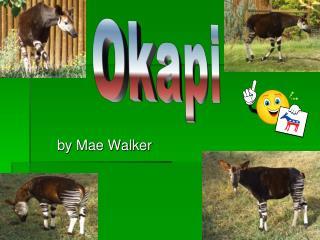 by Mae Walker