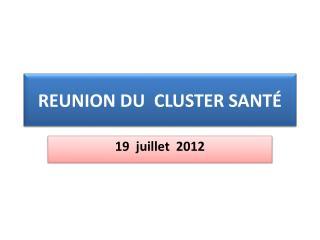 REUNION DU CLUSTER SANTÉ