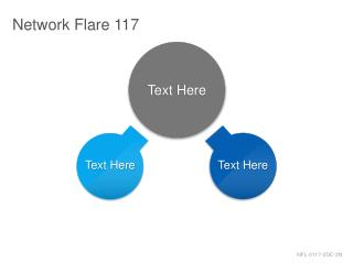 Network Flare 117