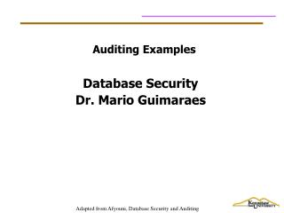 Auditing Examples