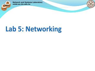 Lab 5: Networking