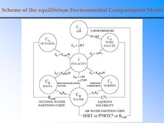 Scheme of the equilibrium Environmental Compartments Model