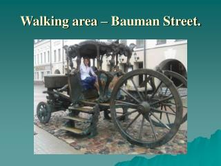 Walking area – Bauman Street.