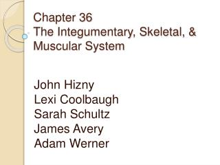 Chapter 36 The  Integumentary , Skeletal, & Muscular System