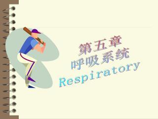 第五章 呼吸系统 Respiratory