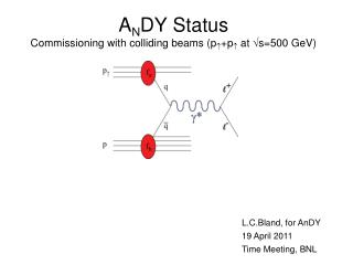 A N DY Status Commissioning with colliding beams (p  +p  at s=500 GeV)
