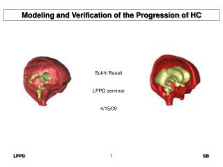 Modeling and Verification of the Progression of HC