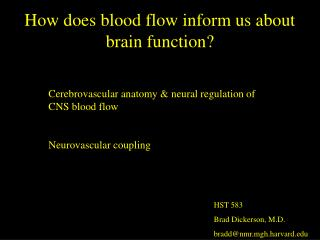 How does blood flow inform us about brain function?