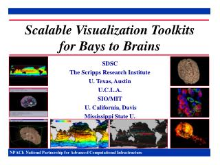 Scalable Visualization Toolkits for Bays to Brains