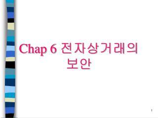Chap 6 전자상거래의 보안