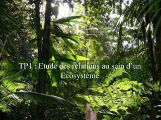 TP1: Etude des relations au sein d'un Ecosystème