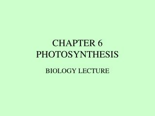 CHAPTER 6 PHOTOSYNTHESIS