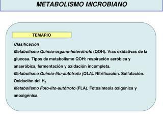 Cómo alimentos que aceleran el metabolismo para quemar grasa ?
