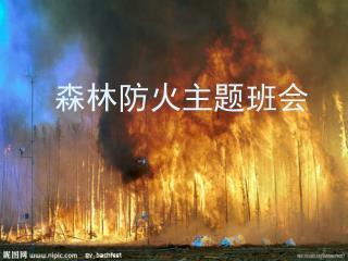 森林防火主题班会