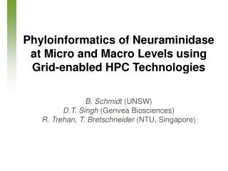 Phyloinformatics of Neuraminidase at Micro and Macro Levels using Grid-enabled HPC Technologies