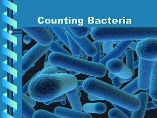 Counting Bacteria