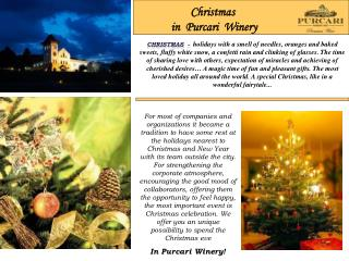 Christmas in Purcari Winery