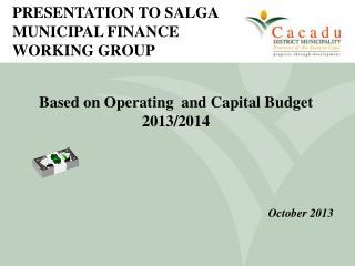 PRESENTATION TO SALGA MUNICIPAL FINANCE WORKING GROUP