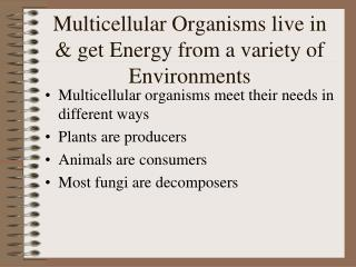 Multicellular Organisms live in & get Energy from a variety of Environments