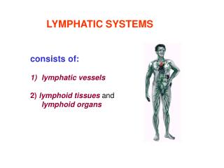 LYMPHATIC SYSTEMS