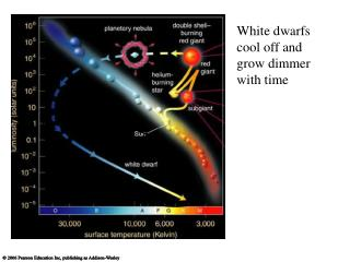White dwarfs cool off and grow dimmer with time