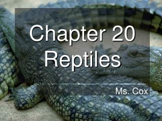 Chapter 20 Reptiles