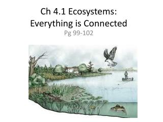 Ch 4.1 Ecosystems:   Everything is Connected