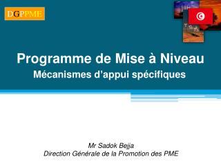 Mr Sadok Bejja Direction Générale de la Promotion des PME