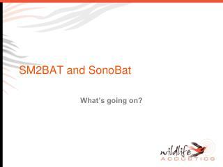 SM2BAT and SonoBat