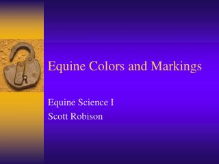 Equine Colors and Markings