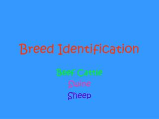 Breed Identification