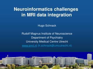 Neuroinformatics challenges  in MRI data integration