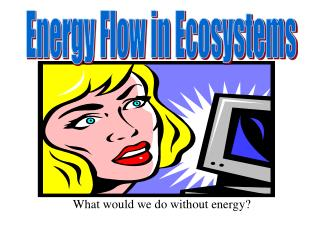 What would we do without energy?