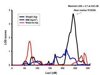 Maximal LOD = 3.7 at 242 cM