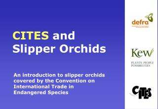 CITES and Slipper Orchids