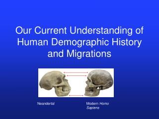 Our Current Understanding of Human Demographic History and Migrations